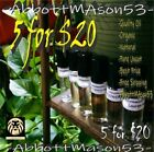 WoMEN Perfume BODY OILS, fragrance Roll-On Assorted Variety TOP Quality UNCUT  ! $5.95 USD on eBay