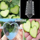 US 10Pcs Vegetable Shaping Mold Garden Star Heart Cucumber Growing Forming Tools