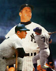 Mickey Mantle NY Yankees New York MLB Baseball Stadium Art 03 8x10 - 48x36