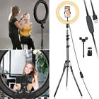 Kyпить LED Ring Light Dimmable Lamp Phone Photo Video Studio Tripod Selfie Stand Camera на еВаy.соm