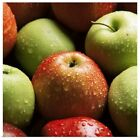 Kyпить Red and green apples Poster Art Print, Food Home Decor на еВаy.соm