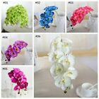 Artifical Silk 8 Heads Phalaenopsis Flowers Butterfly Orchid Wedding Home Decors