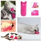 2Pcs Catnip Pillow Pet Cat Teeth Scratch Toy Gift Chew Crazy Grinding Play Toys