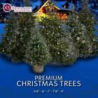 The White Company Artificial Christmas Tree Size 4.5ft/ 6ft / 7ft / 7.5ft / 9ft