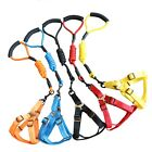 NEW PET STRAP HARNESS WITH LEASH