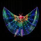Color LED Light Wing Dance Belly Dance Performance Fluorescent Butterfly Cloak