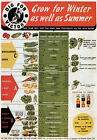WB8 Vintage WW2 Dig For Victory Grow Winter & Summer Veg British WWII Poster A3
