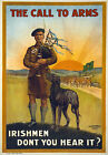 WA77 Vintage WWI Call To Arms Irish Ireland War Recruitment Poster WW1 A4