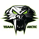 "Arctic Cat Cathead Decal Sticker - Black White Green - 3"" 6"" 12"" - 5239-72_"