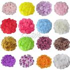 200 Silk Rose Petal Flower Used Directly Wedding Party Supply Decoration Colors