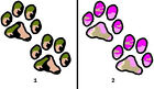 Camo Paw Prints Nail Decals Set of 20 - Choose from 2 designs