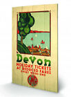 Devon Holiday Tickets GWR Retro Travel Wooden Wall Art Ready To Hang