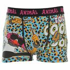 Muppets Kids Junior Boys Animal Single Boxer Shorts Comfort Fit Underwear New