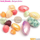 Freeform multi-color MOP sea shell jewelry making loose beads 12pcs