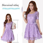 Womens Sexy Lace Hollow Slim Casual Skirt Clubwear Cocktail Evening Party Dress