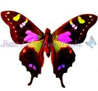 TRANSPARENT BUTTERFLY 6, PRE-CUT or SHEET suncatcher scrapbooking craft 3d