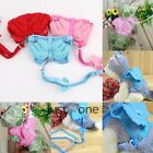 Cute Wings Style Dacron Chest Clothes Traction Rope Harness Pet Puppy Dogs Cats