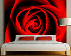 Photo Wall Mural Lovely Rose  Wallpaper Wall art Wall decor Roses Blossoms Red