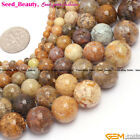 """Round Natural Agate Gemstone Jewelry Making Loose Bead 15"""" 4/6/8/10/12/14mm Pick"""