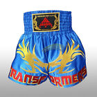Dragons Embroidery Muay Thai Boxing Fight Shorts MMA Kick Martial Arts Trunks