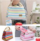 Travel Outdoor Picnic Insulated Thermal Cooler Lunch Box Storage Carry Bags W
