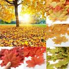 100pcs Maple Leaves Fall Leaf Wedding Artificial Scrapbook Party Decor Ornament