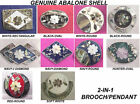 2-IN-1 HANDCRAFTED ABALONE SHELL ALPACA SILVER FLORAL PIN BROOCH PENDANT-NEW