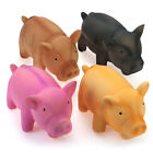 WONPET Pet Pig Grunting Animal Squeaky Latex Dog Toy Sound Puppy Chew Play M L