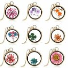 Hot Handmade Real Dandelion Seeds In Glass Wish Bottle Chain Necklace Pendant