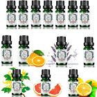 Pure Essential Oils 10ml Therapeutic Grade Aromatherapy Free P&P HOT SALE