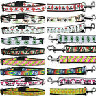 Adjustable Durable Nylon Dog Collar And Leash Set 04