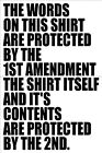 2nd Amendment Car/Truck/Wall/laptop vinyl decal Protected by 1st & 2nd - 2ND009