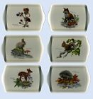 Wildlife Sandwich Tray Macneil Animal Fox Rabbit Mouse Deer Squirrel Hedgehog