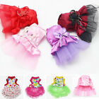 New Cat Bow Tutu Dress Lace Skirt Pet Puppy Dog Princess Costume Apparel Clothes