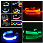 Pets Dog Cat LED Lights Flash Night Safety Collar Adjustable 4 Size S-XL 7color