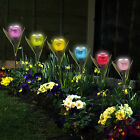 Garden Tulip Flower Shape LED Solar Powered Lights Outdoor Yard Standing Decor