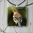 BIRD FINCH PENDANTS NECKLACE MEDIUM OR LARGE -mkd3Z