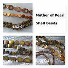 Mother of Pearl Shell Beads Nugget Chip Teardrop Coin Oval Brown Spacer Gemstone