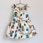 Owl Girls Dress NWT