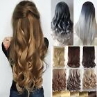 Women One Piece Full Head Clip in Hair Extensions Straight Curly Ombre Long T12
