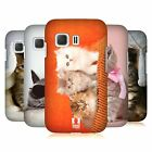 HEAD CASE DESIGNS CATS HARD BACK CASE FOR SAMSUNG GALAXY YOUNG 2