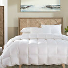Hotel All Season 650 FP Stripe White Goose Down Comforter Oversize Medium Warmth image