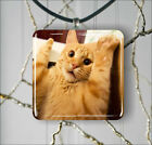 CAT HANDS UP FUNNY PENDANT NECKLACE 3 SIZES CHOICE -fnu8Z