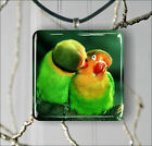 BIRDS LOVE IS FOR PARROTS TOO PENDANT NECKLACE 3 SIZES CHOICE -jhg6Z