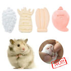 Hamster Teeth Mineral Grinding Stone Fruit Shaped Pet Rat Rabbit Parrot Chew Toy