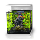 Desk Top All Glass Nano Aquarium With Dimmable Led Lighting - 4 Gallon/15L