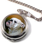 English Bulldog Full Hunter Pocket Watch (Optional Engraving)