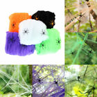 Halloween Decor Cotton Hanging Spider Web Spiders Stretchy Cobweb Bar Props