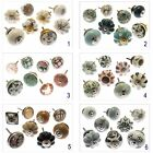 Sets of 8 Ceramic/Glass Cupboard Door Drawer Knobs Perfect to Upcycle/Reburbish