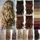 Professional HAIR EXTENTIONS one piece 5 CLIP IN 3/4 FULL HEAD Wavy/straight fld